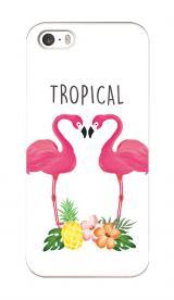 トロピカルフラミンゴ